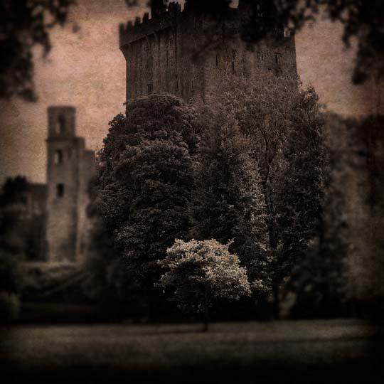 Blarney Castle 1_Adj 2_Tex 3 _ RTP_ 24 Nov 13 SFW