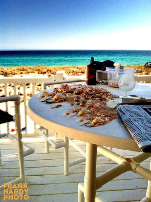 IMG_0847 Table with Shells_RTP_SFW