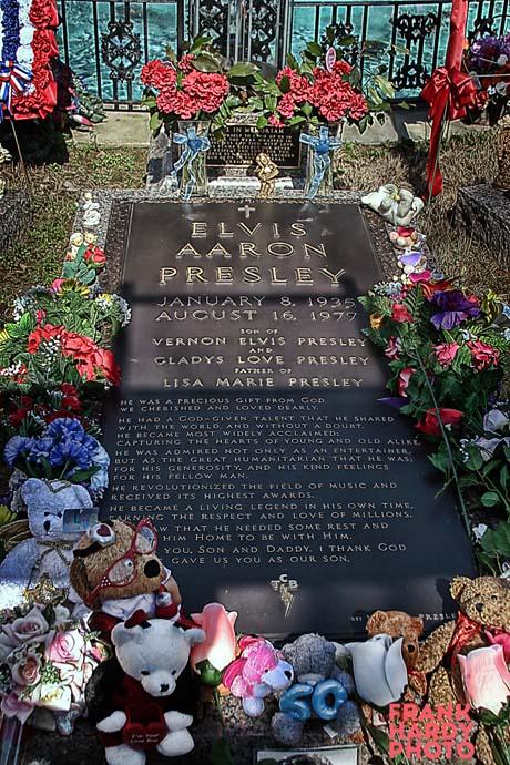 IMG_7332  Elvis Grave 1 _ RTP _ Lucis _ SFW