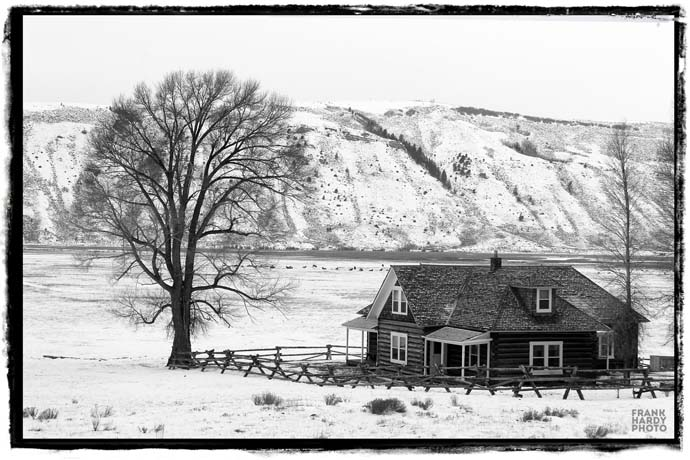 IMG_9686 Home in Snow 1 _ RTP _ BW 2 _ SFW