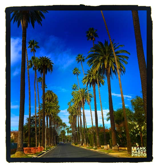 IMG_0287 Beverly Hills Palms_RTP_8 Feb 16 _SFW